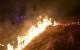 Požar v naravi 28.2.2019
